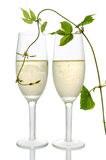 Pair of champagne flutes Royalty Free Stock Photos