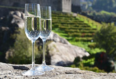 Pair of champagne glasses. Stock Images