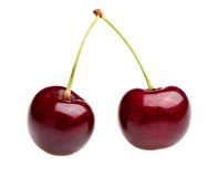 Pair of Cherries Royalty Free Stock Photos