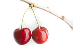 Pair of cherries Royalty Free Stock Photo