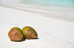 Pair of cocunuts on the beach Stock Images