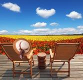 Pair of comfortable sun loungers stock photos