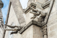 Pair of crocodile gargoyles on the Basilica del Voto Nacional. The right crocodile clearly shows the damage to the ornaments Stock Image