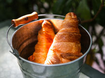 Pair of croissants in a tin bucket lit by strong morning sun li stock photo