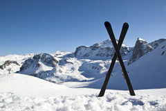 Pair of cross skis in snow Royalty Free Stock Photography