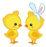Pair of cute Easter chicks. Royalty Free Stock Photos