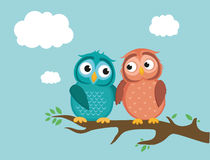 A pair of cute owlet sitting on a branch. Owls in love. Royalty Free Stock Photo