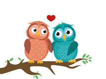 A pair of cute owlet sitting on a branch. Owls in love hearts Royalty Free Stock Photography
