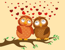 A pair of cute owlet sitting on a branch. Owls in love hearts Stock Photography