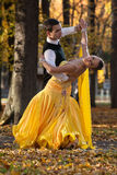 Pair of dancers dancing in the woods. Man with suit, woman in yellow long dress  middle of the palace park in autumn. Dry fallen c Royalty Free Stock Photos
