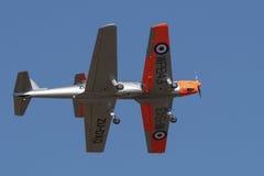 Pair of de Havilland Chipminks in formation Stock Image