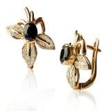 Pair of diamond earrings Stock Images