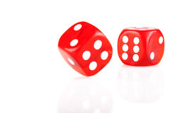 Pair of Dice Stock Image