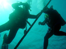 Pair of divers. Two divers ascending Royalty Free Stock Photos
