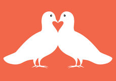 Pair of doves in love  illustration valentine card Royalty Free Stock Images