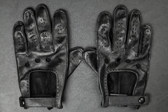 Pair of driving gloves Stock Image