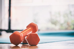 Pair of dumbbells on a wooden floor Stock Image