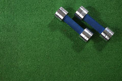 A pair of dumbells on a grass background Royalty Free Stock Images