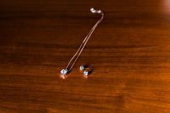 Pair earrings Stock Images