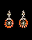 Pair of earrings Royalty Free Stock Images
