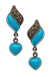 Pair of earrings isolated Stock Images