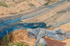 Pair of faded bluejeans laying in dirt. On ground near blue nylon mesh stock images