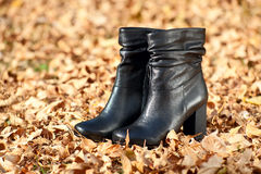 Pair of female boots in autumn foliage Royalty Free Stock Photos