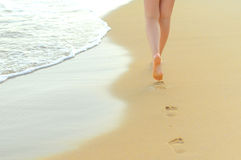 Pair of female legs Stock Photography