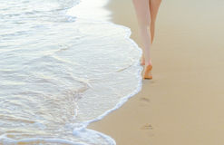 Pair of female legs. On a seashore royalty free stock photography
