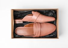 Pair of female shoes in box on white background. Top view Stock Photos