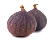 Pair of fig fruits Stock Photos