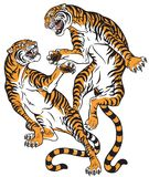 Pair of fighting tigers tattoo. Pair of tigers in the battle . Two fighting big cats . Tattoo style vector isolated illustration Royalty Free Stock Image