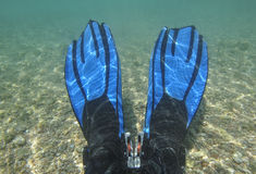 Pair of fins underwater in lagoon Royalty Free Stock Photography