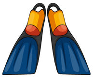 Pair of fins on white background. Illustration Stock Photo
