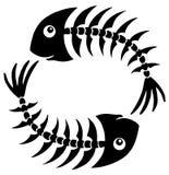 Pair of fishbones. Vector illustration Stock Photos