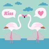 Pair of flamingo bird cartoon , card Stock Images