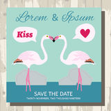 Pair of flamingo save the date vector card Stock Image