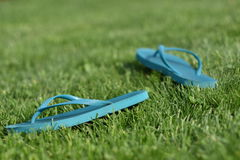 Pair of Flip-Flop Sandals in Summer Royalty Free Stock Photos