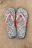 A Pair of Flip Flops. A close up view of a pair of animal print plastic flip flops on the beach sand on a sunny summers day stock photos