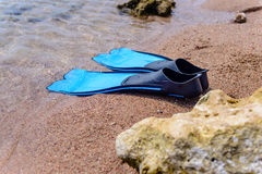 Pair of flippers on the seashore Royalty Free Stock Photography