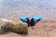 Pair of flippers on the seashore Royalty Free Stock Photos