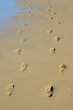 Pair of footprints Stock Images