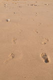 Pair of Footsteps in Sand Stock Photo
