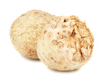 Pair of fresh celery root. On white background royalty free stock photography