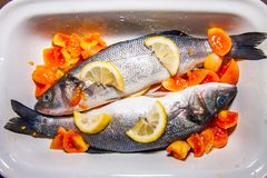 Pair of fresh sea bass, in white saucepan, in olive oil stock photo