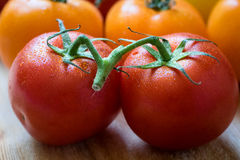 Pair of fresh wet red tomatoes Stock Images