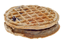 Pair of Frozen Blueberry Whole Grain Waffles Royalty Free Stock Photos