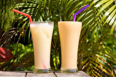 Pair of fruit shakes Royalty Free Stock Image