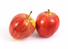 Pair Gala Apples Royalty Free Stock Photo