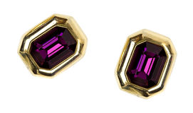 Pair of gaudy earrings Stock Image